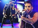 Adam Lambert puff.jpg