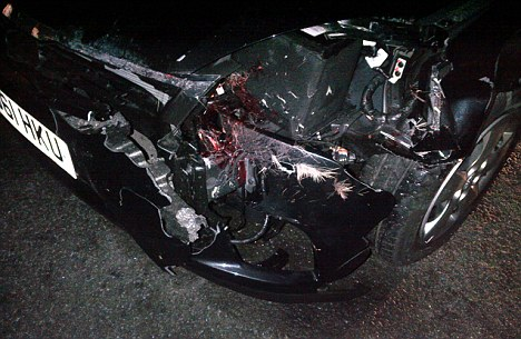Wrecked: Blood splatters and fur can be seen on the Kia that Arg, his manager, and a female driver where traveling in when it hit a deer