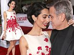 """WESTWOOD, CA - FEBRUARY 01:  Actor George Clooney (R) and Amal Clooney attend Universal Pictures' """"Hail, Caesar!"""" premiere at Regency Village Theatre on February 1, 2016 in Westwood, California.  (Photo by Todd Williamson/Getty Images)"""