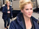 eURN: AD*195059203  Headline: Celebrity Sightings in New York City - February 1, 2016 Caption: NEW YORK, NY - FEBRUARY 01:  Actress Amy Schumer is seen on the set of her new movie on February 1, 2016 in New York City. Photo by Raymond Hall/GC Images)  (Photo by Raymond Hall/GC Images) Photographer: Raymond Hall  Loaded on 01/02/2016 at 21:24 Copyright:  Provider: GC Images  Properties: RGB JPEG Image (14753K 2846K 5.2:1) 1865w x 2700h at 300 x 300 dpi  Routing: DM News : GroupFeeds (Comms), GeneralFeed (Miscellaneous) DM Showbiz : SHOWBIZ (Miscellaneous) DM Online : Online Previews (HEALTH), CMS Out (Miscellaneous)  Parking: