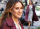 Mandatory Credit: Photo by Startraks Photo/REX/Shutterstock (5580099c)\nSarah Jessica Parker\n'Divorce' TV show on set filming, New York, America - 02 Feb 2016\nSarah Jessica Parker filming 'Divorce' on location in Bryant Park\n