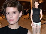 Mandatory Credit: Photo by Rob Latour/Variety/REX/Shutterstock (5580118a)\nKate Mara\n14th Annual VES Awards, Inside, Los Angeles, America - 02 Feb 2016\n