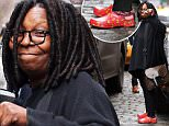 *NO NEW YORK DAILY NEWS / NEWSCOM*\nEXCLUSIVE: Whoopi Goldberg waves to the photographer while wearing colorful shoes with a cats face print and cat socks as she leaves LURE Fishbar on Prince & Mercer in SoHo today.\n\nPictured: Whoopi Goldberg\nRef: SPL1215903  010216   EXCLUSIVE\nPicture by: Lawrence Schwartzwald/Splash\n\nSplash News and Pictures\nLos Angeles: 310-821-2666\nNew York: 212-619-2666\nLondon: 870-934-2666\nphotodesk@splashnews.com\n