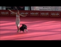 A Woman, Her Dog And Their Stunning Dance