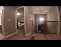 "Parents Put A GoPro On Their Kid's Head While Playing ""Hide And Seek"" Thumbnail"