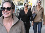 8.February.2016 - Beverly Hills - USA\n*** STRICTLY AVAILABLE FOR UK AND GERMANY USE ONLY ***\nBeverly Hills, CA - Actress, Sharon Stone, appeared to be a woman half her age as she walked around Beverly Hills without a bit of make-up on.  She was seen wearing a wild hairdo that resembled that of 'Pebbles' from the Flintstones, a tan pullover sweater, blue jeans, suede boots.\nBYLINE MUST READ : AKM-GSI-XPOSURE\n***UK CLIENTS - PICTURES CONTAINING CHILDREN PLEASE PIXELATE FACE PRIOR TO PUBLICATION ***\n*UK CLIENTS MUST CALL PRIOR TO TV OR ONLINE USAGE PLEASE TELEPHONE 0208 344 2007*
