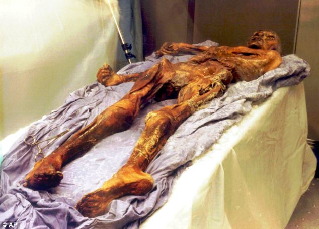 Only a very small number of select individuals from history have had their genetic codes sequenced before, and none with Richard III's noble pedigree. They include Otzi the iceman, pictured, whose mummified 3,000-year-old remains were found in the Italian Alps in 1991