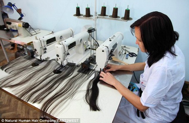 The hair is carefully teased into a usable shape by a professional technician, who also study the type of hair