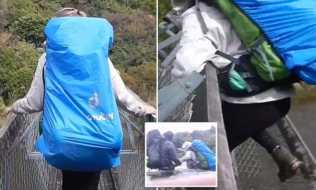 Four tourists in New Zealand fall 8m after a suspension bridge collapses