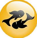 zodiak ribi - Интерьер дома по знакам зодиака