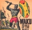 Image is a comic book African warrior