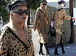 **EXCLUSIVE** Date: February 21st 2016  Photo Credit: MOVI Inc. Does Rita Ora have a new fella? The songstress, sporting a very unusual leaopart print dress and leather flat cap, was spotted on a lazy Sunday afternoon in West Hollywood,Ca with a tall dark handsome mystery man. When the pair spotted a photographer the normally camera friendly Rita dashed back to a waiting car and hid and didn't seem to pleased to be snapped with the unknown gentleman.