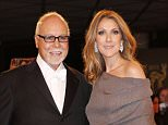 DUESSELDORF, GERMANY - NOVEMBER 22: Celine Dion and Rene Angelil attend the 'BAMBI Awards 2012' at the Stadthalle Duesseldorf on November 22, 2012 in Duesseldorf, Germany.   (Photo by Franziska Krug/Getty Images)