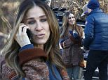 """EXCLUSIVE: Actress Sarah Jessica Parker photographed on the set of her upcoming HBO series """"Divorce,"""" presently filming on location in Sleepy Hollow, NY. The production closed off an entire stretch of the East-bound Route 117, including the entrance to Rockefeller State Park, to film a scene in which Parker's station wagon is pulled over by NY State Police. Parker makes an emotional call prior to being handed a citation.\n\nPictured: Sarah Jessica Parker\nRef: SPL1233460  220216   EXCLUSIVE\nPicture by: AR Photo/Splash News\n\nSplash News and Pictures\nLos Angeles: 310-821-2666\nNew York: 212-619-2666\nLondon: 870-934-2666\nphotodesk@splashnews.com\n"""