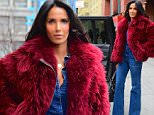 """EXCLUSIVE: Padma Lakshmi was spotted out in Soho on Thursday in NYC. She looked sharp and stylish, in a denim jumpsuit, and a red fur coat. She posed on the street before hopping into an awaiting SUV. She is currently promoting her new book, called """"Love, Loss and What we Ate"""".\n\nPictured: Padma Lakshmi\nRef: SPL1233614  250216   EXCLUSIVE\nPicture by: 247PAPS.TV / Splash News\n\nSplash News and Pictures\nLos Angeles: 310-821-2666\nNew York: 212-619-2666\nLondon: 870-934-2666\nphotodesk@splashnews.com\n"""