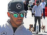 MONTMELO, SPAIN - MARCH 01:  Lewis Hamilton of Great Britain and Mercedes GP arrives in the paddock with his dogs Roscoe and Coco during day one of F1 winter testing at Circuit de Catalunya on March 1, 2016 in Montmelo, Spain.  (Photo by Mark Thompson/Getty Images)