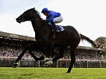 NEWMARKET, ENGLAND - AUGUST 07:  Emotionless riden by William Buick wins the discovernewmarket.co.uk Maiden Stakes at Newmarket Racecourse on August 7, 2015 in Newmarket, England.  (Photo by Jamie McDonald/Getty Images)