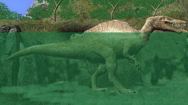A new theory claims that dinosaurs weren't land animals - they lived in water to support their weight, and their huge tails were swimming aids