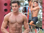 Zac Efron shirtless on the monkey bars filming Baywatch in Miami Beach.\n\nPictured: zac efron\nRef: SPL1241427  050316  \nPicture by: Splash News\n\nSplash News and Pictures\nLos Angeles: 310-821-2666\nNew York: 212-619-2666\nLondon: 870-934-2666\nphotodesk@splashnews.com\n