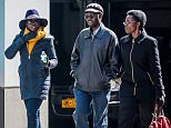 EXCLUSIVE: Lupita Nyong'o seen taking a casual afternoon stroll with her parents in New York City.  Pictured: Lupita Nyong'o, Dorothy and Peter Anyang' Nyong'o Ref: SPL1240274  070316   EXCLUSIVE Picture by: Allan Bregg/Splash News  Splash News and Pictures Los Angeles: 310-821-2666 New York: 212-619-2666 London: 870-934-2666 photodesk@splashnews.com