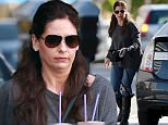149042, EXCLUSIVE: Sarah Michelle Gellar shows off her brunette hair as she grabs a couple of coffee drinks in Los Angeles. Sarah Michelle is reviving her role as Kathryn Merteuil for the TV reboot of the hit movie 'Cruel Intentions'. Los Angeles, California - Sunday March 6, 2016. Photograph: © PacificCoastNews. Los Angeles Office: +1 310.822.0419 sales@pacificcoastnews.com FEE MUST BE AGREED PRIOR TO USAGE