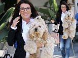 Picture Shows: Lisa Vanderpump, Ken Todd  March 08, 2016\n \n Reality TV star Lisa Vanderpump takes her pooch shopping in Beverly Hills, Los Angeles. Not far behind Lisa was her husband Ken Todd.\n \n Non-Exclusive\n UK RIGHTS ONLY\n \n Pictures by : FameFlynet UK © 2016\n Tel : +44 (0)20 3551 5049\n Email : info@fameflynet.uk.com