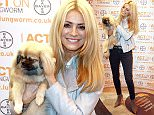 Mandatory Credit: Photo by Graham Stone/REX/Shutterstock (5612333n)\nTess Daly\nCrufts Dog Show, NEC Birmingham, Britain - 10 Mar 2016\n