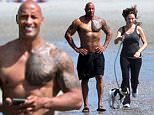 Exclusive... 51993025 Dwayne Johnson is spotted at the beach in Miami with his girlfriend Lauren Hashian, and their dog, on March 10, 2016. The actor is taking it easy on his day off from filming 'Baywatch,' enjoying some quality time with his girl. ***NO WEB USE W/O PRIOR AGREEMENT - CALL FOR PRICING*** FameFlynet, Inc - Beverly Hills, CA, USA - +1 (310) 505-9876