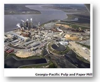 Georgia-Pacific Pulp and Paper Mill