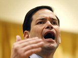 Republican presidential candidate Sen. Marco Rubio, R-Fla., speaks at a campaign event in The Villages, Fla., Sunday, March 13, 2016. (AP Photo/Gerald Herbert)