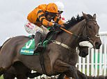 Thistlecrack ridden by Tom Scudamore clear the last flight to go on and win the bet365 Long Distance Hurdle Race run during Hennessy Gold Cup Day at Newbury Race Course, Newbury.