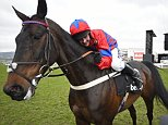 Horse Racing - Cheltenham Festival - Cheltenham Racecourse - 16/3/16  Nico de Boinville celebrates winning the 3.30 Betway Queen Mother Champion Chase on Sprinter Sacre  Reuters / Dylan Martinez  Livepic  EDITORIAL USE ONLY.