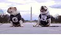 Butler, Georgetown's rival mascots unite for positive political message