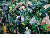 Scientists discover bacteria that can eat plastic trash