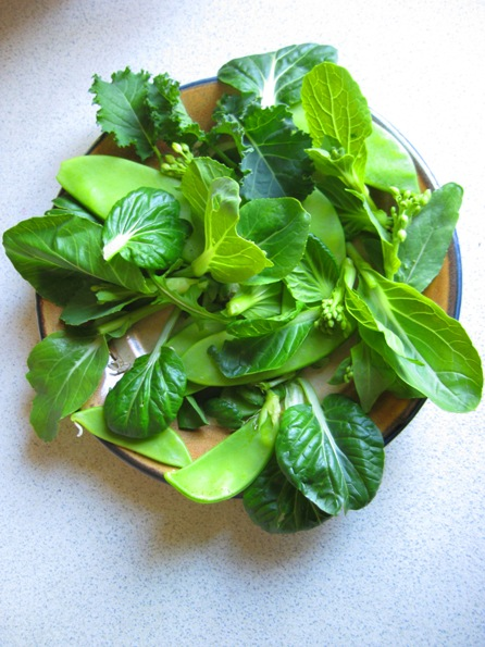 winter greens selection:
