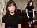 LONDON, ENGLAND - MARCH 22:  Daisy Lowe attends the BFC/Vogue Designer Fashion Fund 2016 winners announcement at the Bulgari Hotel on March 22, 2016 in London, England.  (Photo by David M. Benett/Dave Benett/Getty Images)