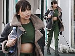 EXCLUSIVE FAO DAILY MAIL ONLINE - FEE AGREED\nMandatory Credit: Photo by Beretta/Sims/REX/Shutterstock (5618778k)\nDaisy Lowe\nDaisy Lowe out and about, Primrose Hill, London, Britain - 24 Mar 2016\n