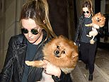 Little Mix manchester\nLeigh Ann Pinnock and Perrie Edwards of Litle Mix seen leaving their Manchester hotel on Saturday morning Perrie carrying her half shaven dog.