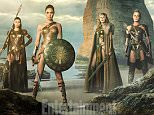 Yes, you can use the watermarked image. please link back and credit  EW.com.   http://www.ew.com/article/2016/03/24/wonder-woman-first-look-gal-gadot-robin-wright-connie-nielsen?iid=sr-link1  Image Credit: Clay Enos/DC Comics  Jennifer Marcus Manager, Communications Entertainment Weekly  Wonder Woman Posted March 24 2016 ? 9:00 AM EDT  Themyscira is a hidden island where Amazon women of Greek myth have thrived for centuries, living in harmony and free to self-govern away from the gaze of man. It?s also, of course, the birthplace of Wonder Woman, who after years of false starts, is finally a movie star. With a much heralded introduction in Batman v Superman: Dawn of Justice, Wonder Woman (Gal Gadot) is now a cornerstone in Warner Bros.? DC Comics multiverse, with a crucial role in the first Justice League movie (out November 2017), and the center of her own long-awaited film, which will hit screens next June.  Directed by Patty Jenkins (Monster), Wonder Woman will be an origin story il
