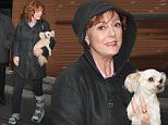 Susan Sarandon, wearing a boot/walking cast on her left foot and carrying her dog, was spotted chatting with Radioman (Craig Cataldo) as she was leaving 'The View' studios\nFeaturing: Susan Sarandon\nWhere: New York City, New York, United States\nWhen: 28 Mar 2016\nCredit: WENN.com\n**Only available for publication in UK, Germany, Austria, Switzerland, Italy, Australia. No Internet Use. Not available for Subscribers**