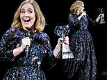 Adele wins an award whilst on stage in Birmingham as she wraps her UK tour. Adele was presented the iHeartRadio music awards gong for best song and gave an acceptance speech mid concert at the Genting Arena in Birmingham as she wraps her UK Tour this week. Featuring: Adele Adkins Where: Birmingham, United Kingdom When: 31 Mar 2016 Credit: WENN.com
