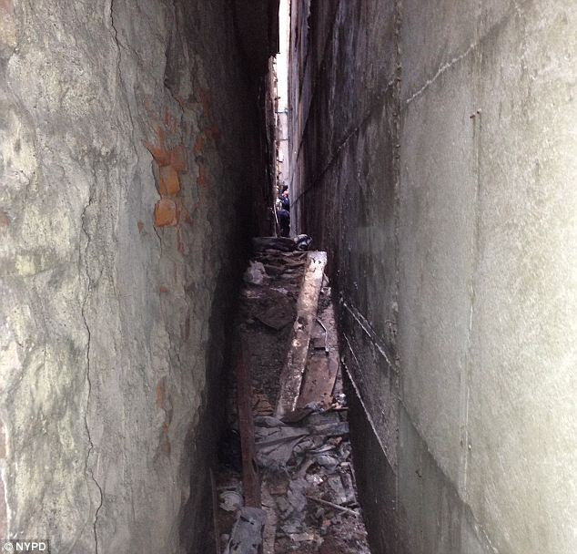 5-feet: The chunk found Wednesday was 5-feet long and police say they've secured the area, pictured, 'like a crime scene'