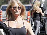 Picture Shows: Goldie Hawn  March 31, 2016\n \n Actress Goldie Hawn stops by her house that is under construction in Pacific Palisades, California. Goldie was rocking some casual work-out gear during the outing. \n \n Exclusive All Rounder\n UK RIGHTS ONLY\n \n UK Rights OnlyPictures by : FameFlynet UK © 2016\n Tel : +44 (0)20 3551 5049\n Email : info@fameflynet.uk.com