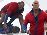 Picture Shows: Dwayne Johnson, The Rock, Dwayne The Rock Johnson  April 01, 2016\n \n Actor Dwayne 'The Rock' Johnson films a gory action scene for the upcoming movie 'Baywatch' in Savannah, Georgia. Dwayne could be seen filming with a bloodied fake body which appears to have been bitten by a shark! Could the cast of 'Baywatch' have a 'Jaws' problem on their hands?\n \n Exclusive All Rounder\n UK RIGHTS ONLY\n Pictures by : FameFlynet UK © 2016\n Tel : +44 (0)20 3551 5049\n Email : info@fameflynet.uk.com