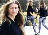 """Exclusive... 52009457 Sofia Vergara heads to the gym while she's in Wilmington, NC on April 3rd, 2016. The actress is visiting her husband Joe Manganiello while he films the upcoming show """"Six."""" FameFlynet, Inc - Beverly Hills, CA, USA - +1 (310) 505-9876"""
