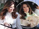 Beverly Hills, CA - Lisa Vanderpump takes a ride with her precious pup after leaving Villa Blanca Restaurant.\n  \nAKM-GSI         April 1, 2016\nTo License These Photos, Please Contact :\nSteve Ginsburg\n(310) 505-8447\n(323) 423-9397\nsteve@akmgsi.com\nsales@akmgsi.com\nor\nMaria Buda\n(917) 242-1505\nmbuda@akmgsi.com\nginsburgspalyinc@gmail.com