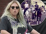 150319, EXCLUSIVE: Kesha spends a relaxing day biking with her boyfriend despite her Sony lawsuit appeal being denied by a judge. A New York judge threw out Kesha's appeal Wednesday in her case against Sony Music and producer Dr. Luke.  Los Angeles, California - Wednesday April 6, 2016. Photograph: © ,  PacificCoastNews. Los Angeles Office: +1 310.822.0419 UK Office: +44 (0) 20 7421 6000 sales@pacificcoastnews.com FEE MUST BE AGREED PRIOR TO USAGE