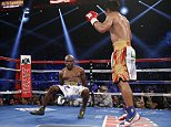 Timothy Bradley falls to the mat after getting hit by Manny Pacquiao, of the Philippines, during their WBO welterweight title boxing bout Saturday, April 9, 2016, in Las Vegas. (AP Photo/John Locher)