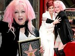 Sharon Osbourne, left, and Cyndi Lauper attend a ceremony honoring Lauper and Harvey Fierstein with stars on the Hollywood Walk of Fame on Monday, April 11, 2016, in Los Angeles.(Photo by Rich Fury/Invision/AP)