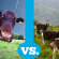 Choosing Between Cow Milk vs Goat Milk | Allergies, Digestion, Benefits and More